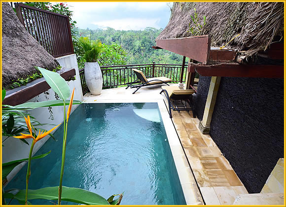 Kupu Kupu Barong Villas and Spa by L'OCCITANE River View Pool Villa - Ubud